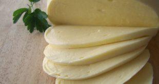 فروش عمده انواع پنیر موزارلا اصل