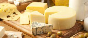 قیمت پنیر ریکوتا