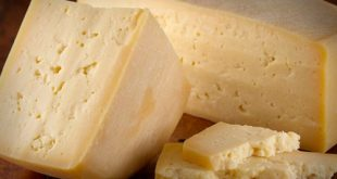 عرضه عمده پنیر پارمسان روز