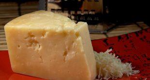 فروش و پخش عمده پنیر پارمسان