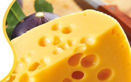 مرکز توزیع و فروش انواع پنیر زرد