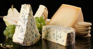 خرید مستقیم انواع پنیر صبحانه طعم دار