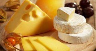 قیمت پنیر تبریز