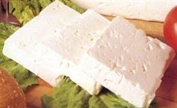 قیمت پنیر لاکتیکی