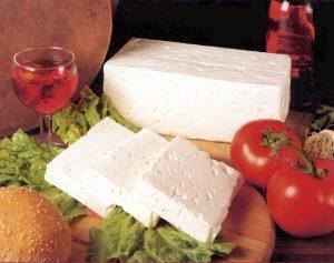 فروش عمده پنیر