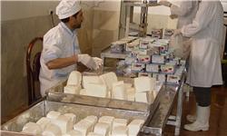 تولید پنیر تبریز