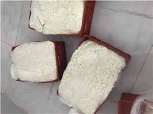 خرید پنیر اولیه