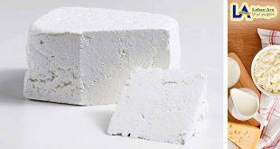 صادرات پنیر سفید فتا
