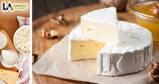 خرید پنیر گیاهی