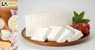 پخش پنیر لیقوان