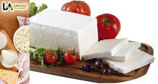 فروش انواع پنیر