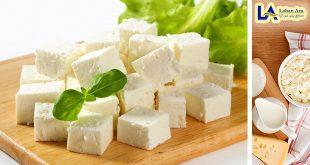 خرید پنیر تک نفره