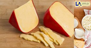 قیمت پنیر پیترا قالبی