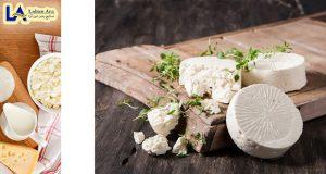 فروش روز پنیر ریکوتا
