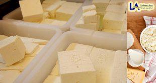 فروشگاه پنیر هلندی