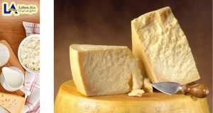 خرید پنیر پارمسان