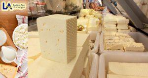 انواع پنیر قالبی و ورقه ای گودا