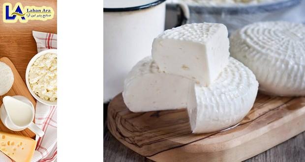 بهترین پنیر پارمزان