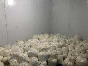 قیمت پنیر اولیه
