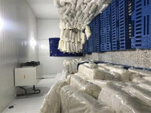 فروش پنیر اولیه